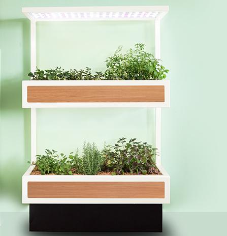 Technologická novinka interiérová zahrada