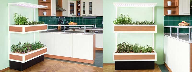 Celoroční pěstování bylinek v kuchyni ve vícepatrových automatických smart zahradách