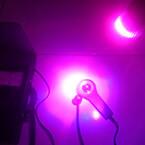 Pěstební 6 W LED žárovka pro podporu růstu a květu rostlin