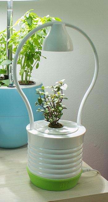 Chytrý květináč pro jednu rostlinu potěší jako originální dárek