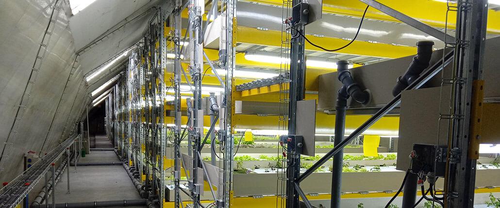 Opravy a modernizace hydroponických a aquaponických systémů a farem