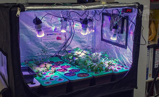 Domácí kancelářský hydroponický systém na pěstování bylinek a jahod v místnosti