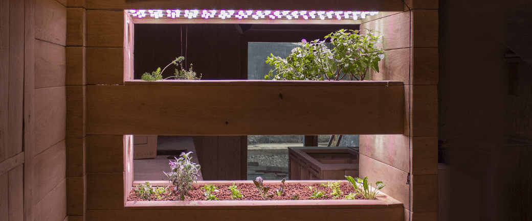 Pěstování bylinek, salátů, adaptogenů a superbylin v automatické hydroponické zahradě