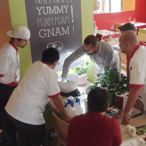 Školení hydroponického pěstování