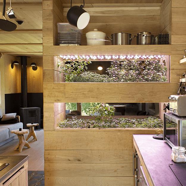 Interiérová zahrada v dřevěné chatě